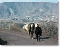 15998_local_with_horse_near_palu_24_march_76.jpg